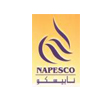National Petroleum Services Company