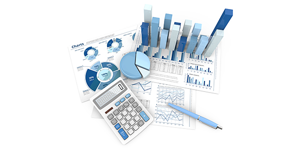 IFRS Applications Services